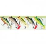 Kummikala TRAPER Holo Fish konksudega 80mm 15g 5tk/pk